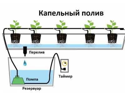 Система капельного полива (орошения)