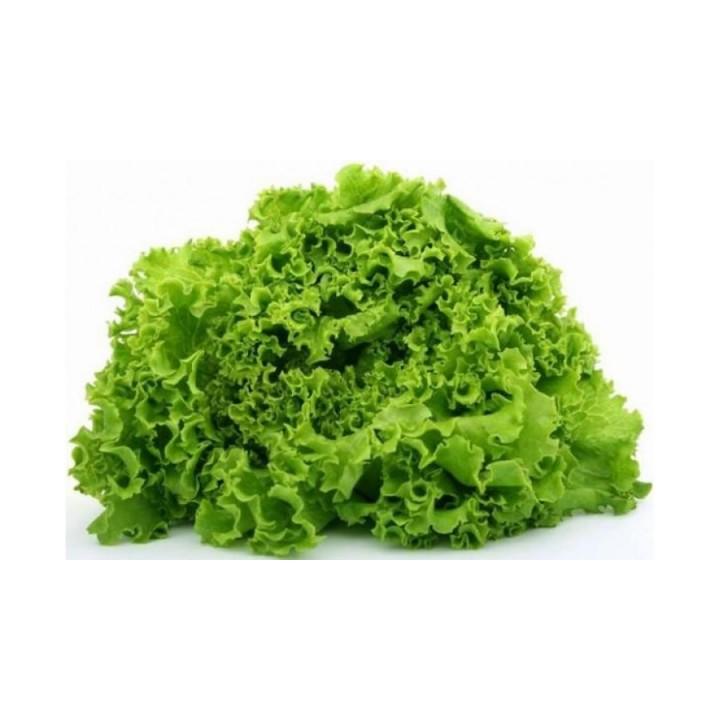 Агроплан для салата методом аэропоники