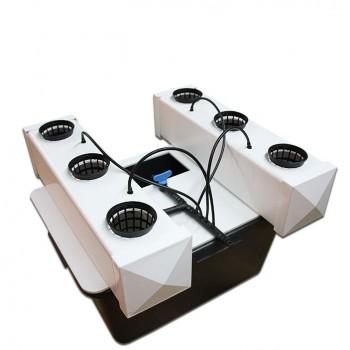 AERO Concept 6